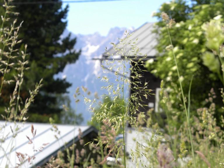 BergeBewegen-Iselsberga28
